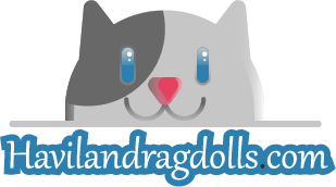 Heidi's Haviland Ragdoll Cats